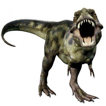 Dinosaur-T-Rex-Jurassic-Park-Sticker-for-Interior-or-Exterior-Use-Wall-Van-Car-201592332366