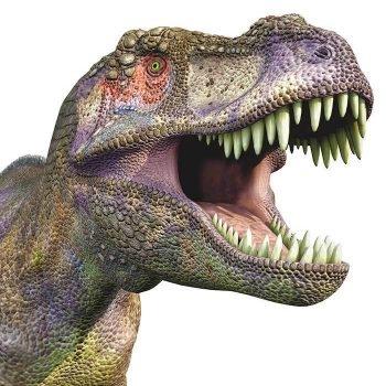 Dinosaur-T-Rex-Roar-Jurassic-Park-Style-Self-Adhesive-Vinyl-Sticker-191873635331
