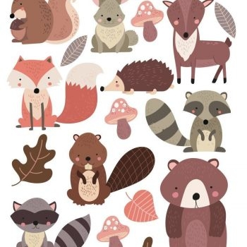 Woodland-Forest-Animals-Nursery-Wall-Stickers-201993435293